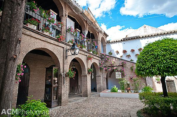 Cordoba, Spain's Patio Festival