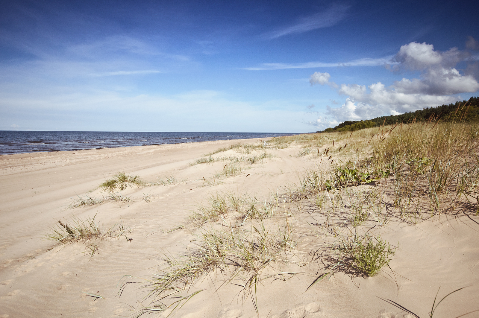 Camping on a beach in Latvia