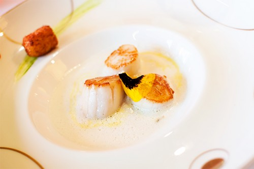 Caramelised Scallops in coconut milk with ginger, lemongrass and curry flavours.