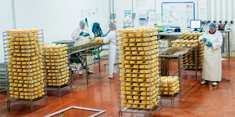 Day 12 – Visit to E. Graindorge Fromagerie in Livarot, France