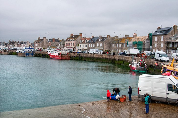 Unloading the crab traps in Barfleur, France