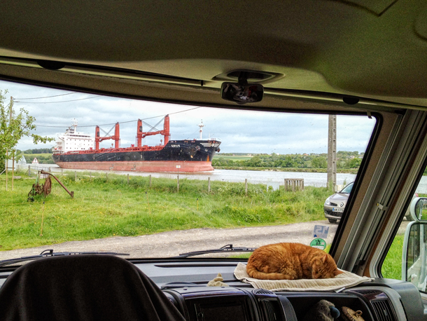 Orange was less than impressed by the giant ships passing by.