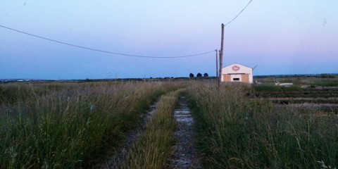 Day 29 – Boondocking in the Salt Flats, Ile Oleron