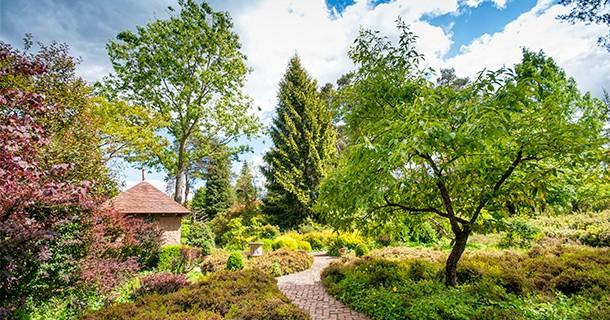 Day 20 – Visit to Arboretum des Grandes Bruyères, Ingrannes, France
