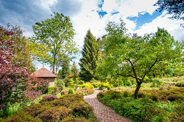 Arboretum des Grandes Bruyères, Ingrannes