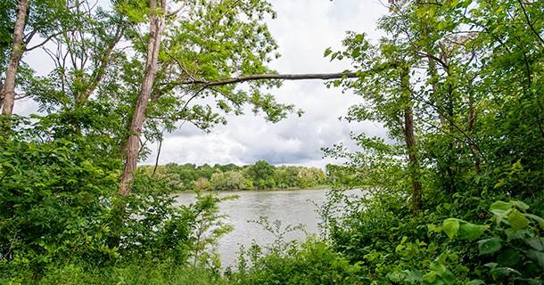 Day 21 – Visit to the Reserve Naturelle de Saint-Mesmin, Orleans, France