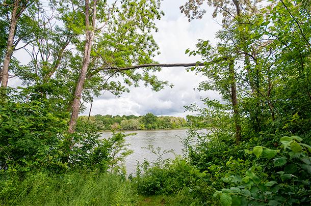 Reserve Naturelle de Saint-Mesmin