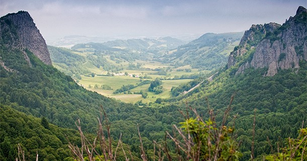 Day 41 – Foraging Tour in Auvergne, France