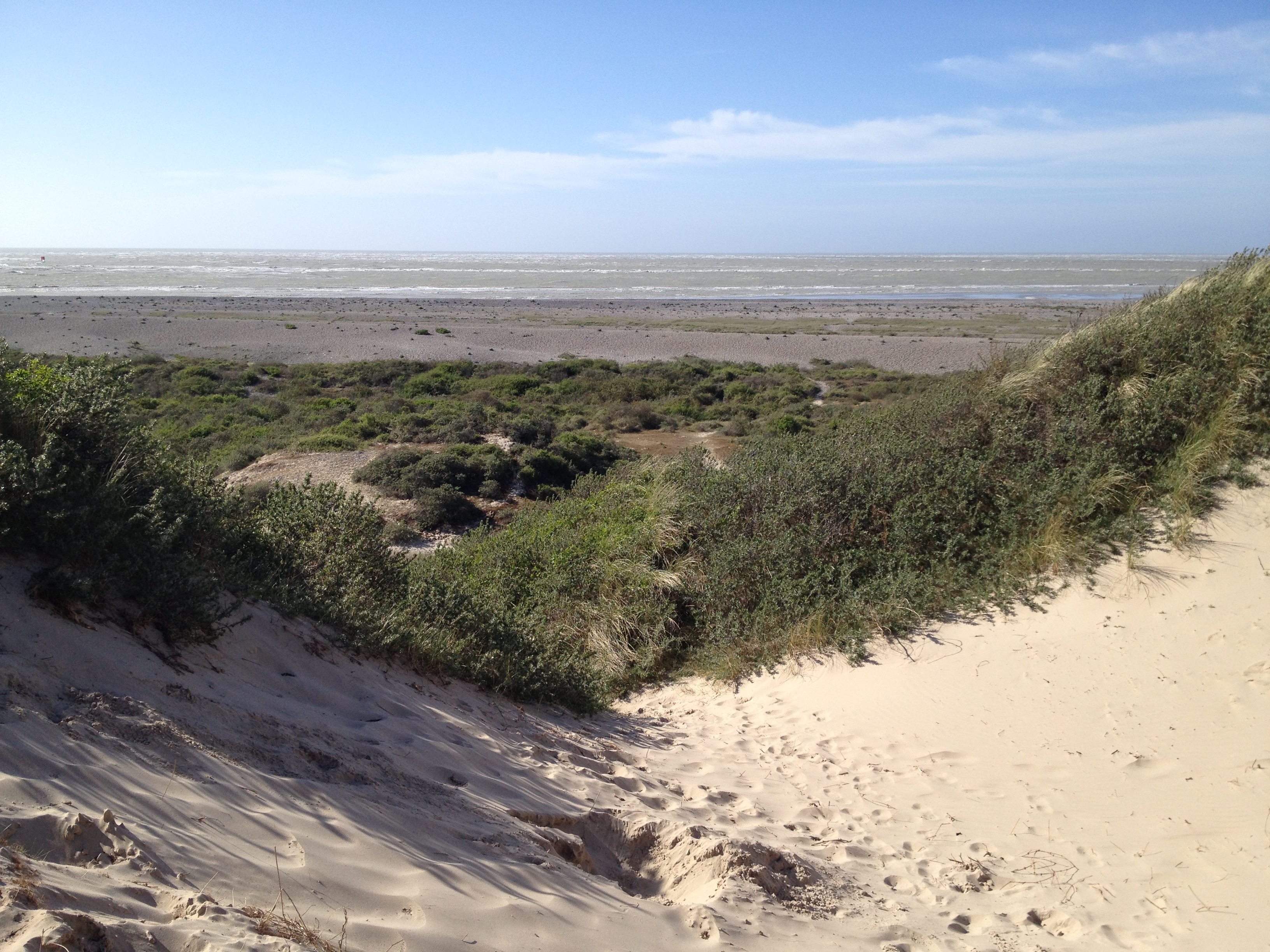 A view of the channel from the top of the dunes.