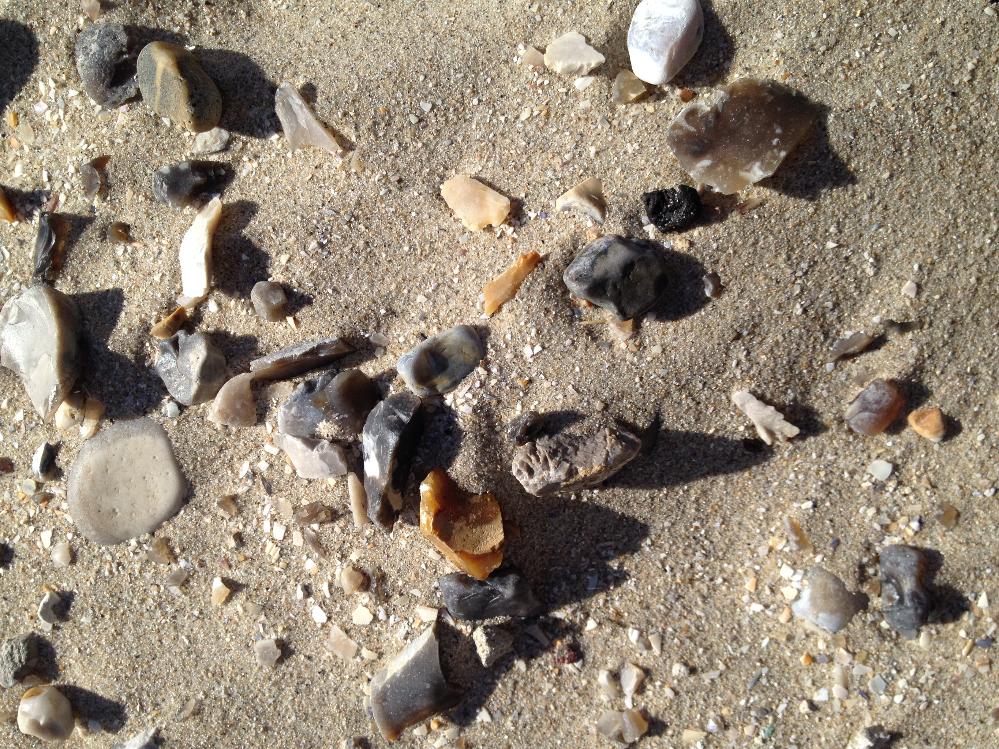 Agate and amber all along the beach.